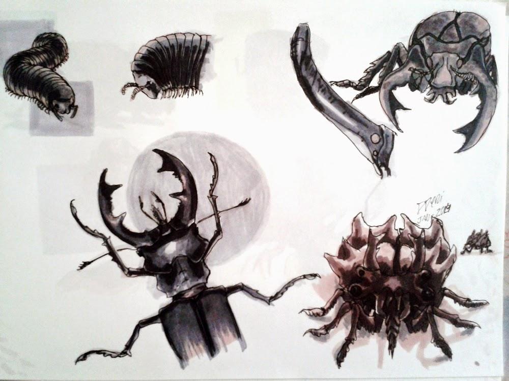 creature design, sketchbook, insetcs, insetos, beetle, centipede, millipede, bug, centopeia, besouro, douglas deri, deri, deriart