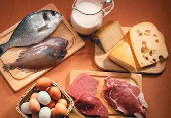 Carne de canguro protein as para bajar de peso