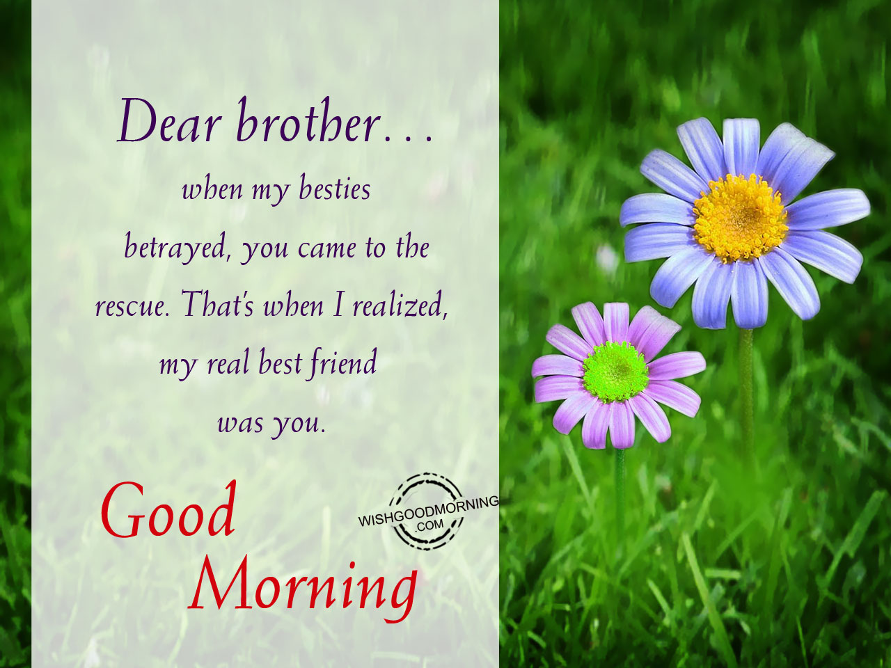 Good Morning Brother : Good morning wishes quotes with sweet images for your best