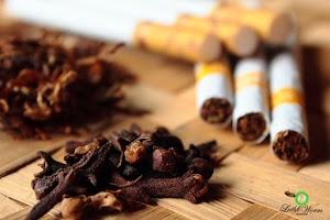 3 Video Mengejutkan - Tentang Fakta Rokok yang justru baik untuk penyembuhan kangker