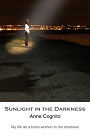 https://www.amazon.com/Sunlight-Darkness-Anne-Cognito-ebook/dp/B00FU8Y05I