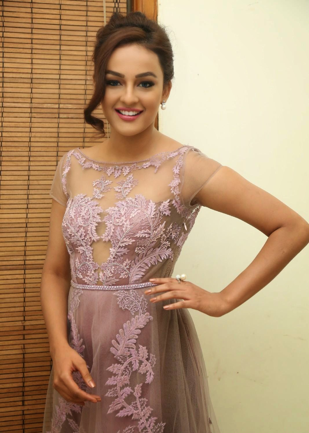 High Quality Bollywood Celebrity Pictures Seerat Kapoor -2887