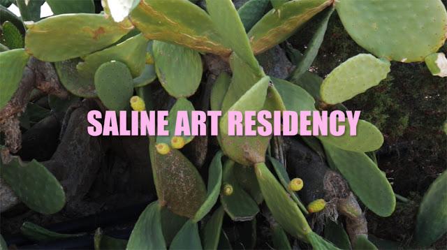 Γλυπτικές δράσεις σε Πόρτο Χέλι και Ερμιόνη από το Saline Art Residency (βίντεο)