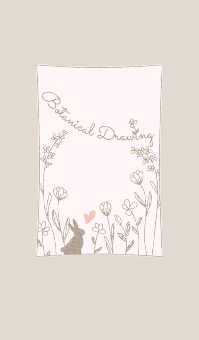 Botanical Drawing/Brown13