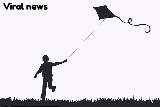 Kite festival of India 2019