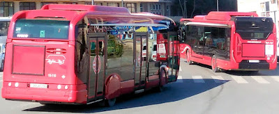 two red buses