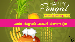 Beautiful Village look Sankranti Festival 2018 Wishes in Telugu Language