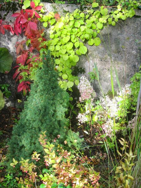 Kuvahaun tulos haulle pikkuinen puutarhani maalaus