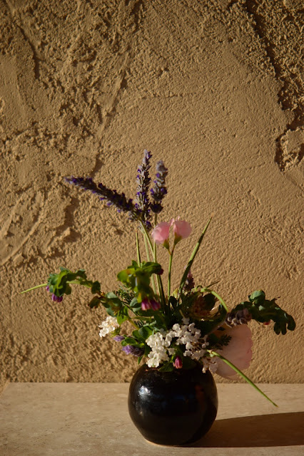 lavender, rose wollerton old hall, cerinthe, monday vase, small sunny garden, IaVoM, cottage garden, amy myers, desert garden