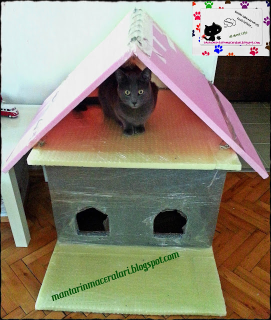 cat house diy