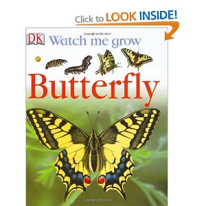 madebyjoey: home learning - butterflies