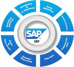 SAP Best Practice Material For C/_THR88/_1608 Exam Q/&A PDF+SIM