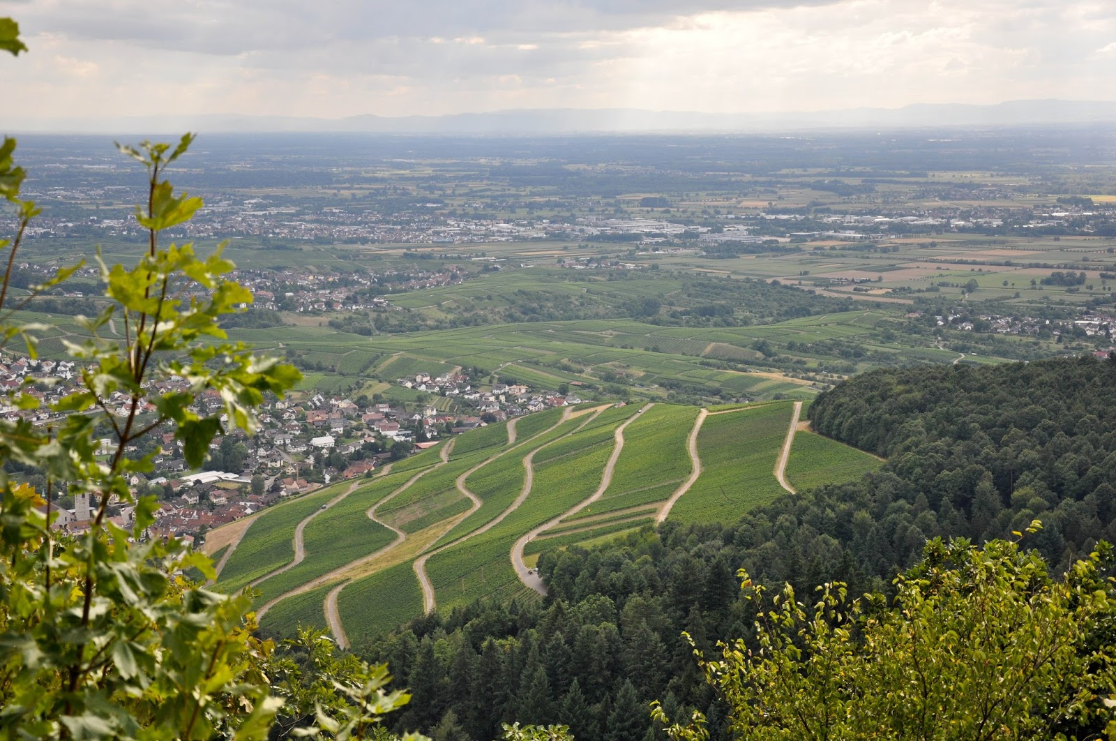 The Rhine Valley seen from the Yburg Castle, Yburg, Germany