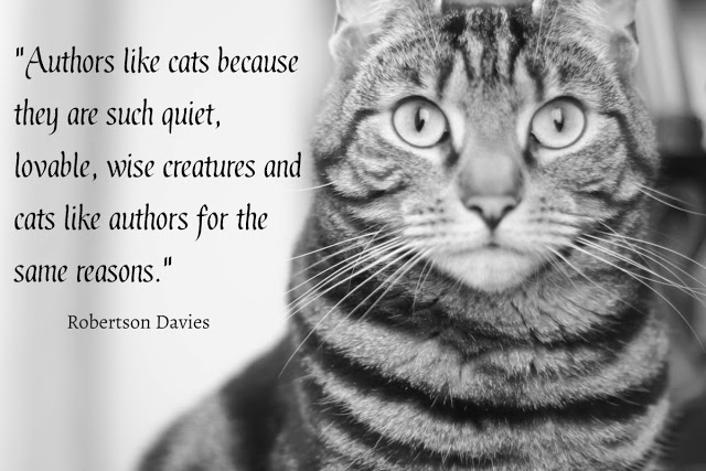 authors and cats