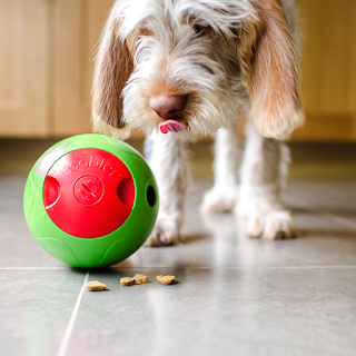 Foobler-Interactive-Puzzle-Feeding-Dog-Toy