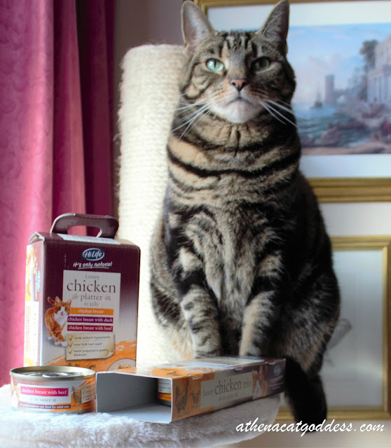 HiLife Cat Food Review and Giveaway