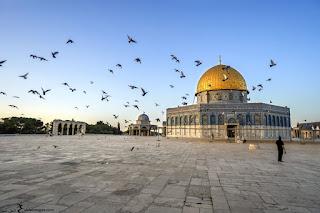 صور القدس 2019