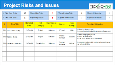 Project Risks and Issues