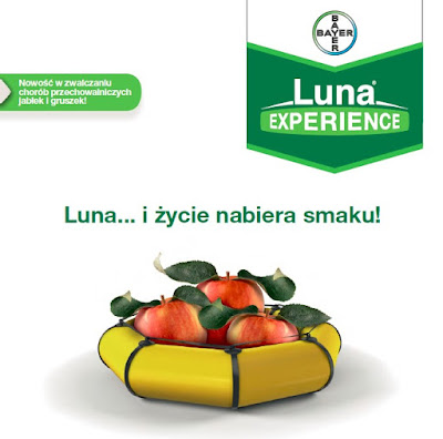 LUNA Experience 400 SC