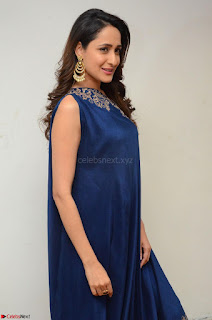 Pragya Jaiswal in beautiful Blue Gown Spicy Latest Pics February 2017 046.JPG