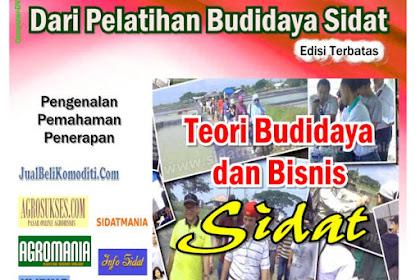 Tersedia DVD Teori Budidaya & Bisnis Sidat (Kode: TE)