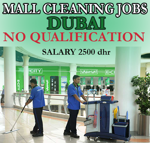 jobs cleaning houses