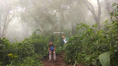 Jalur Pendakian Gunung Manglayang Bandung 1818 mdpl