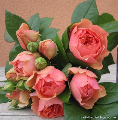 Englische Rosen gebunden