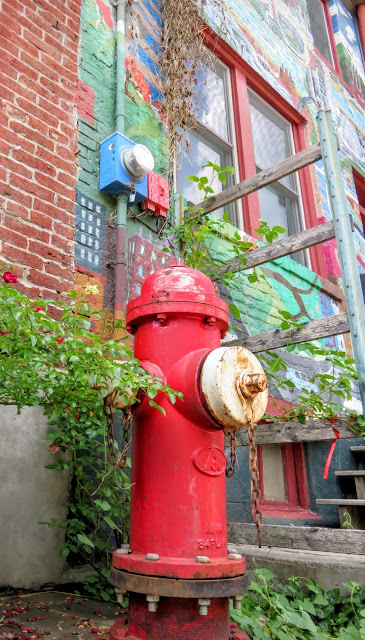 Colorful firehydrant in the Mexican War Streets Neighborhood of Pittsburgh