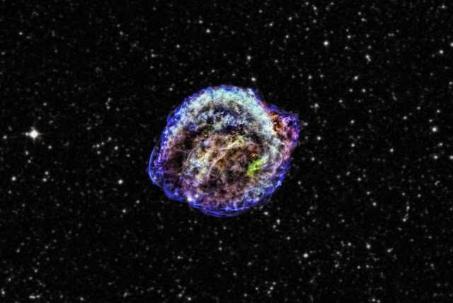 After the Kepler supernova explosion, no survivors were left behind