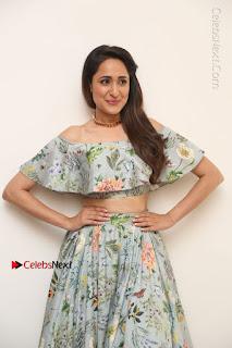 Actress Pragya Jaiswal Stills in Floral Dress at turodu Interview  0091.JPG