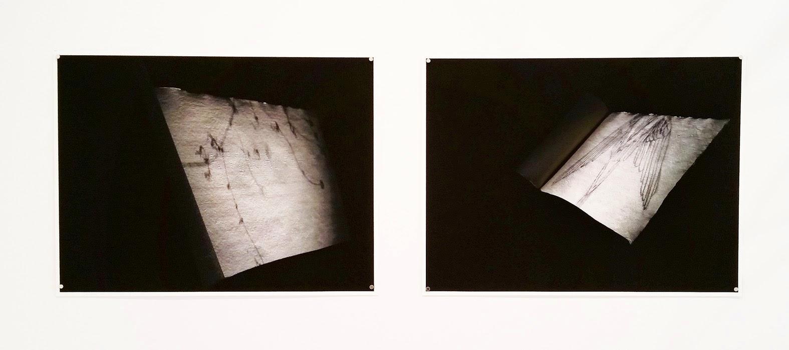Las Fabulas - ados - Teresa Gomez Martorell