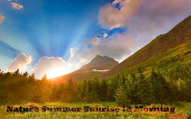 nature summer sunrise hd wallpaper 2016