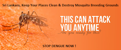 Sri Lanka Dengue Fever Symptoms Prevention and how to control Stats