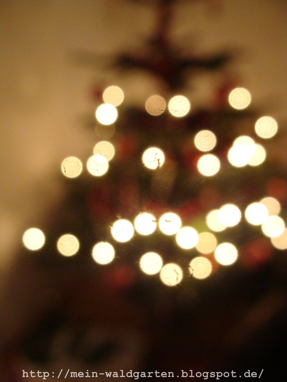 unser bäumchen oh tannenbaum