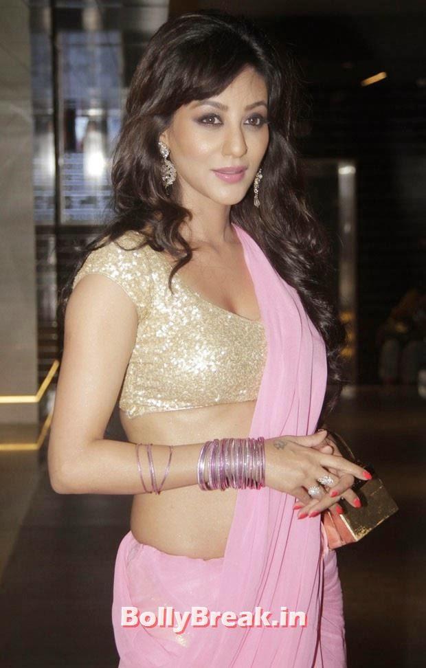 Vedita Pratap Singh in pink saree, hot navel show, Vedita Pratap Singh in Saree - Hot HD Images