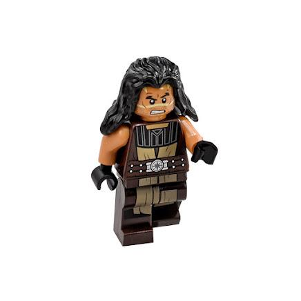LEGO sw746 - Quinlan Vos