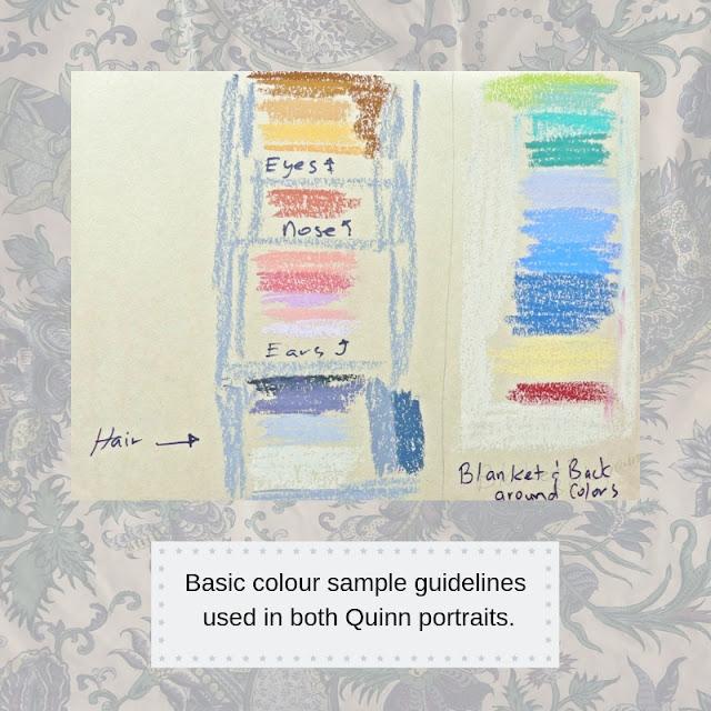Colour samples for pet portrait Quinn.