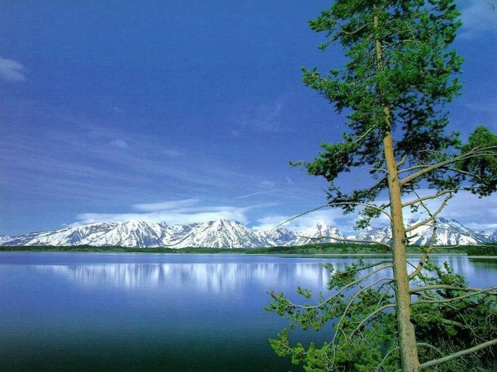 Wallpaper Zh: Nature Scenes Wallpaper