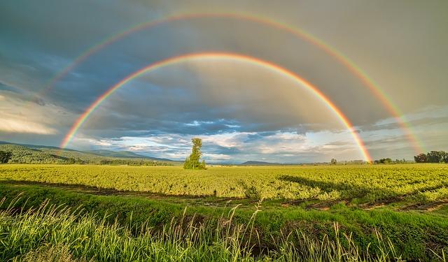 Kata-Kata Mutiara Bijak Tentang Hujan dan Pelangi