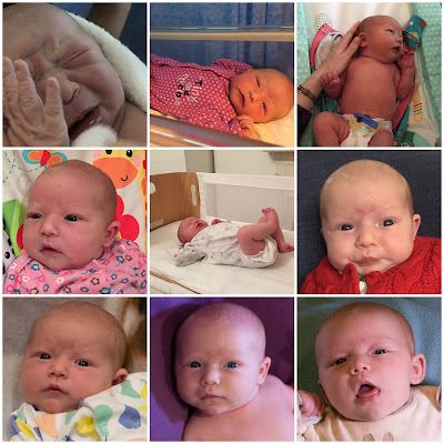 9 pictures of a baby girl from birth to 1 month old