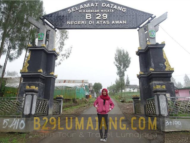 foto b29 lumajang