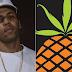 """Pineapple explica retirada do verso do Raffa Moreira em """"Poetas No Topo 2"""""""