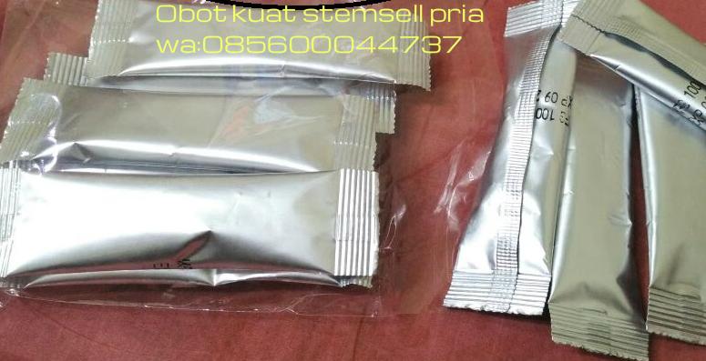 stemsell serbuk ginseng obat kuat pria dewasa penganti blumen