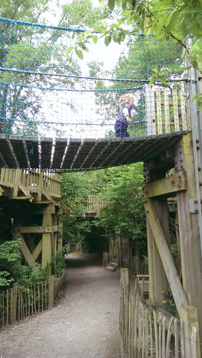 looking-up-at-toddler-on-bridge-at--Perrygrove-Railway-adventure-playground