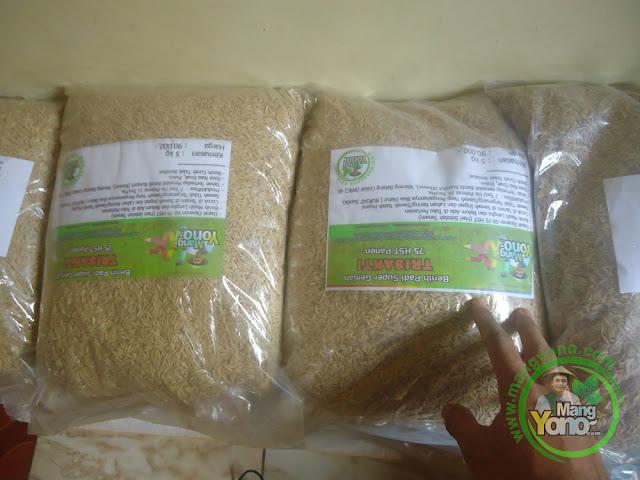 Nahroni Way Kanan, Lampung Pembeli Benih Padi TRISAKTI 75 HST Panen  sebanyak 10 Kg atau 2 Bungkus