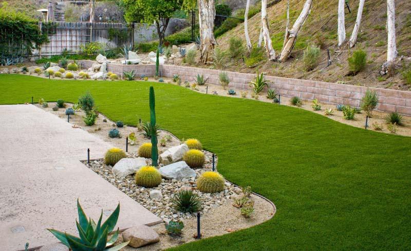 5 Drought Tolerant Landscaping Ideas