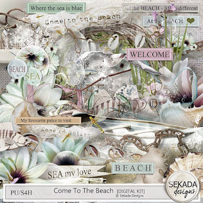 https://www.digitalscrapbookingstudio.com/personal-use/kits/come-to-the-beach-full-kit/