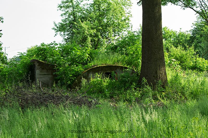 opuszczone gospodarstwo