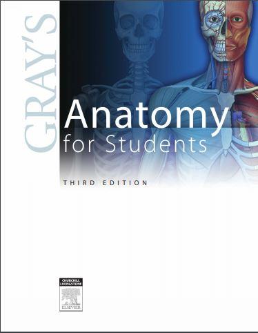 Download Free Pdf Grays Anatomy 3rd Edition Entrytestforum